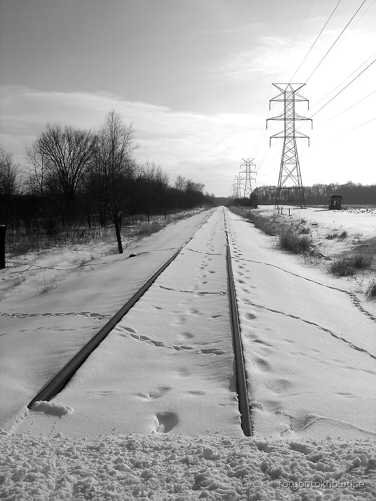 Tracks Leading South by foryoutoknowtice