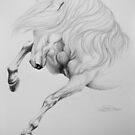 """""""Wild & Untamed"""" - Graphite Sketch by SD 2016 Photography & Art Creations"""