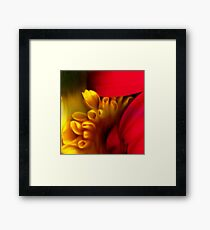 Flowers I Framed Print
