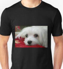 Snowdrop the Maltese  T-Shirt