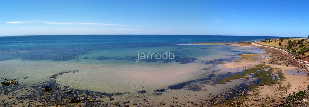 Indented Head by jarrodb