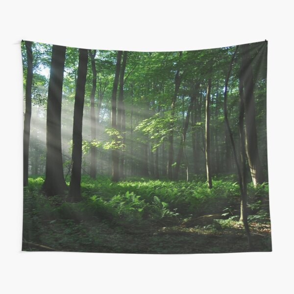 Lighted Forest Tapestry