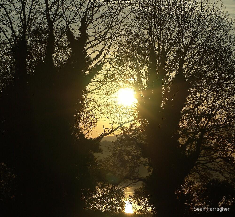 TWO SUNS by Sean Farragher