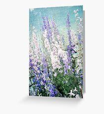 Gladioli Greeting Card