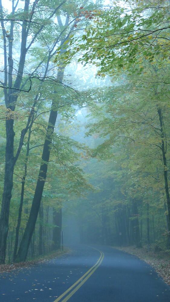 Misty Morning by Nina Andrews