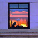 The Art of City Living by Judith Oppenheimer