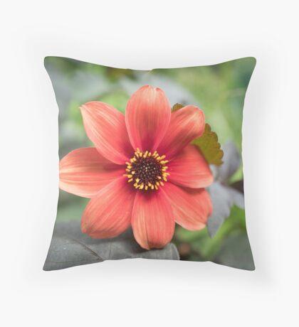 A Peachy Dahlia Throw Pillow