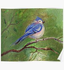 Bird - Spring - Oil Painting Poster