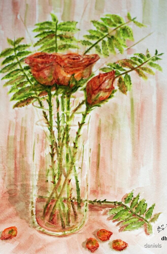 orange roses by daniels