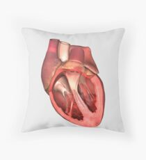 Heart valves showing pulmonary valve, mitral valve and tricuspid. Throw Pillow