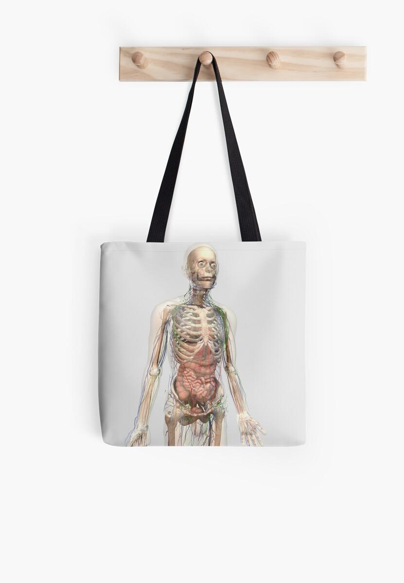 Bolsas de tela «Cuerpo humano con órganos internos, sistema ...