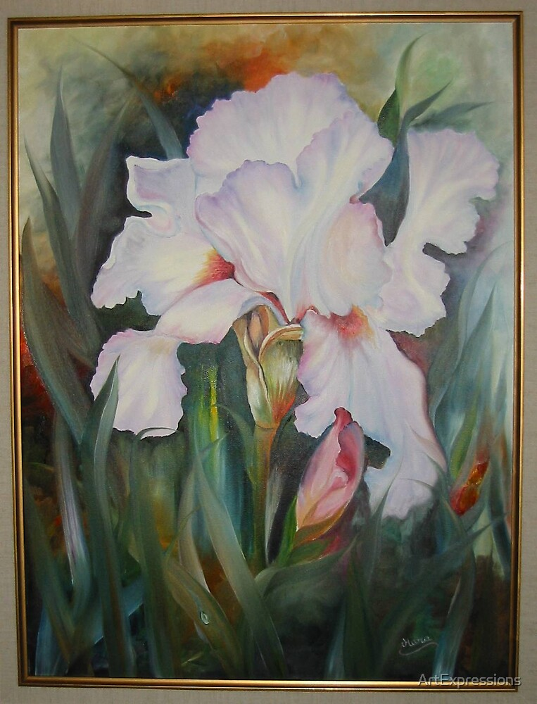 Pastel Iris by ArtExpressions