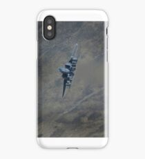 F15E The Panthers with Ribbons & Jelly iPhone Case/Skin