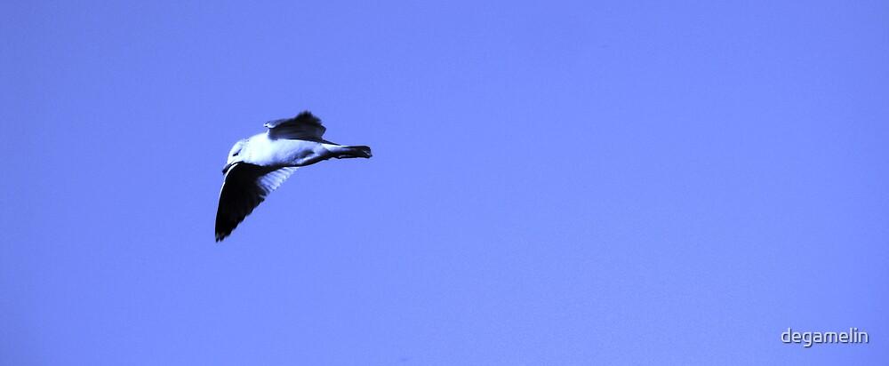 flight away  by degamelin