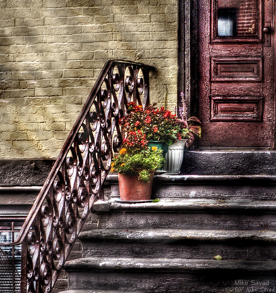 Flower pots on Stairs by Michael Savad