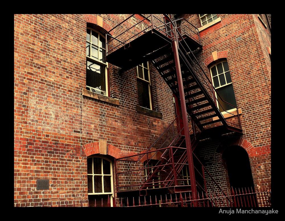 Iron, Bricks and Windows by Anuja Manchanayake