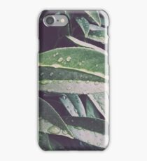 After the Storm Portland iPhone Case/Skin