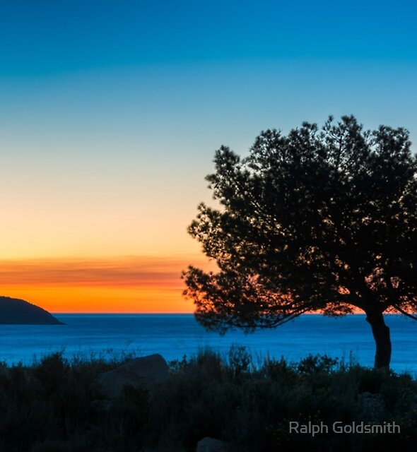 Blue hour tree and island by Ralph Goldsmith