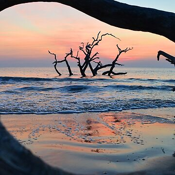 Sunrise at Driftwood Beach by berisme