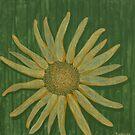 DANCING FLOWER by RoseLangford