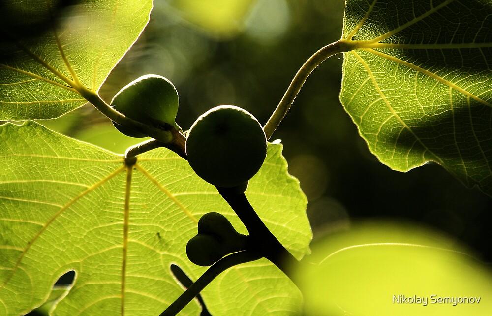 Green by Nikolay Semyonov