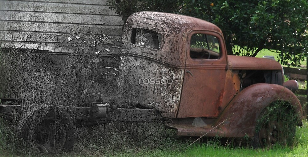 Behind The Shed by rossco