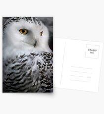 Hedwig Postkarten