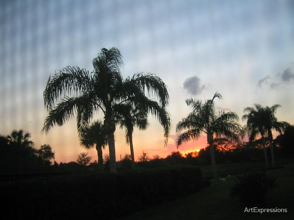 Early Dawn by ArtExpressions
