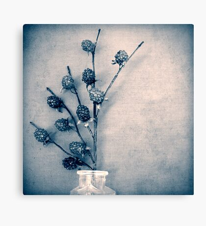 Sweet Blue Canvas Print