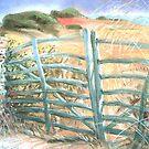 Menorcan Gate £80 by alanpeach