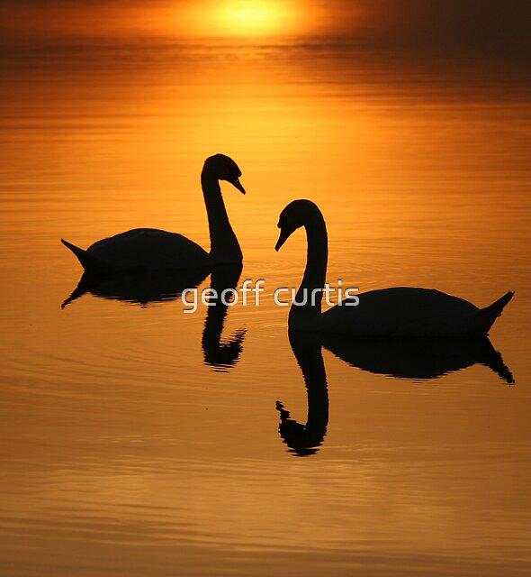 2 On Golden Pond  by geoff curtis