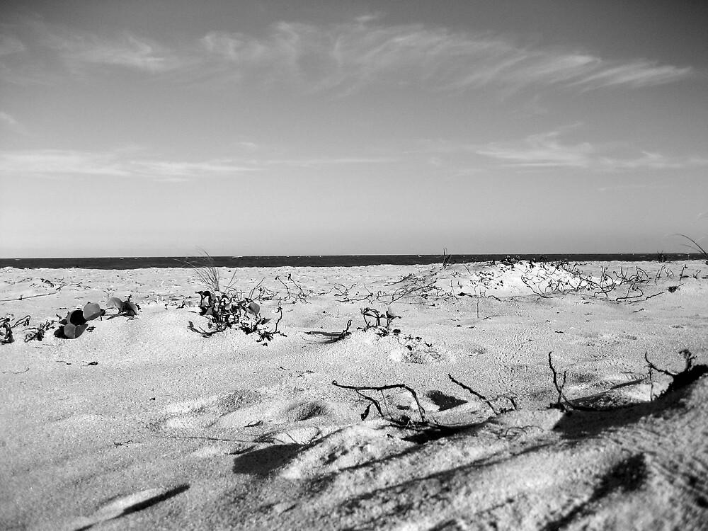 Lonely Beach by LizzyM