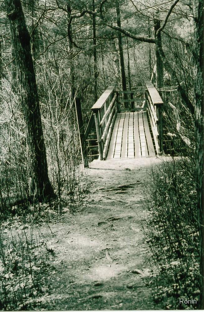 Bridge II by Ronin
