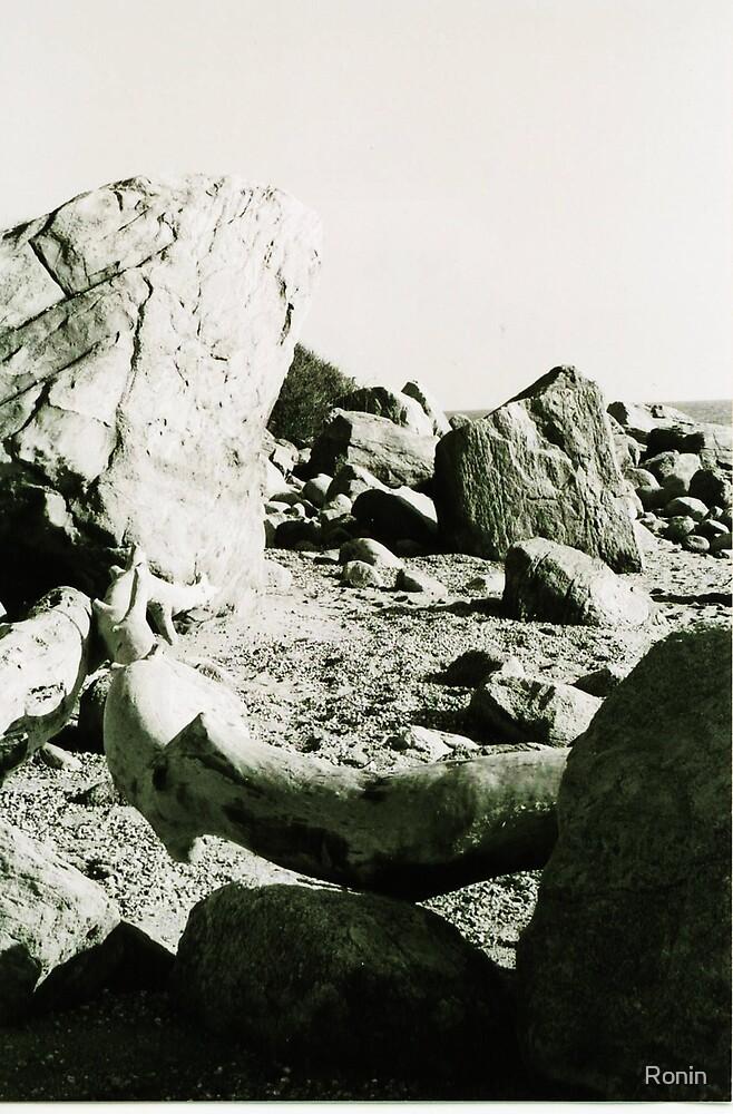 Rockscape by Ronin