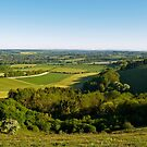 The Meon Valley from Beacon Hill by Alex Cassels