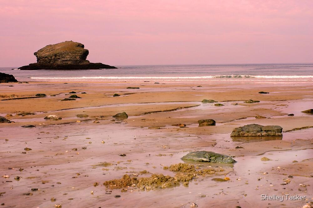 Portreath Beach in Cornwall by Shelley Tasker