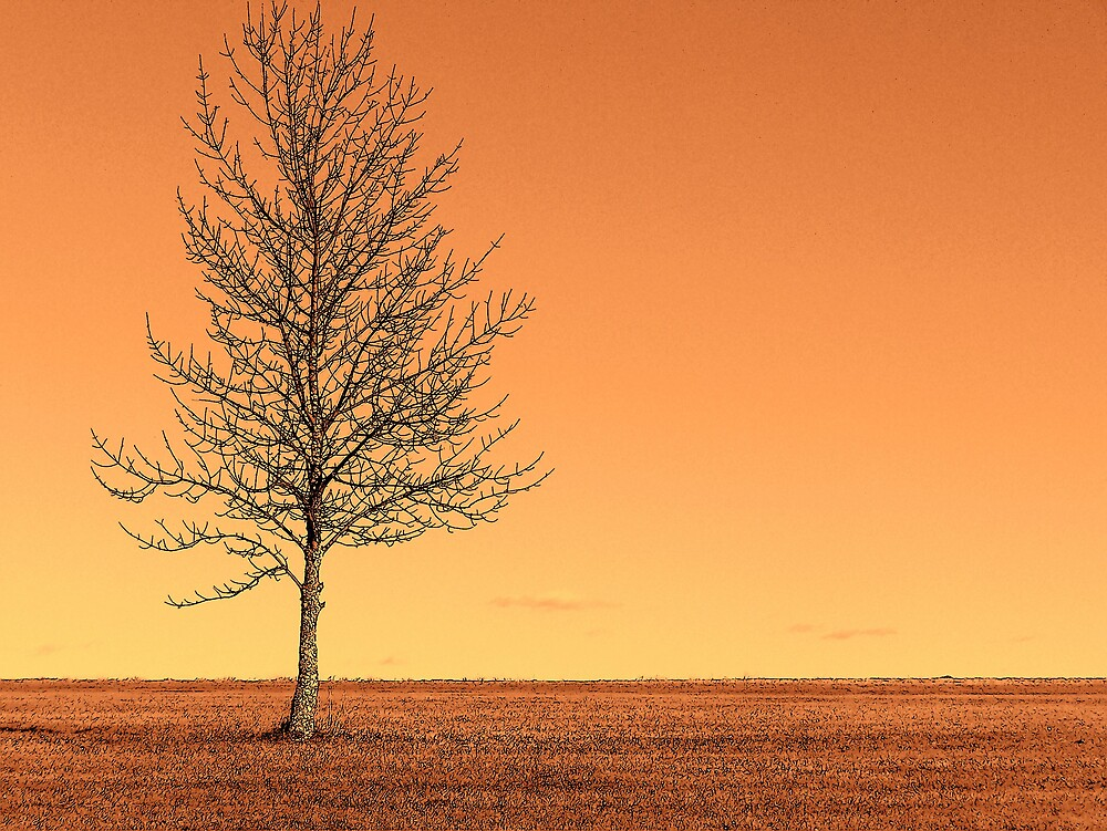 Orange Landscape 2 by Gene Cyr