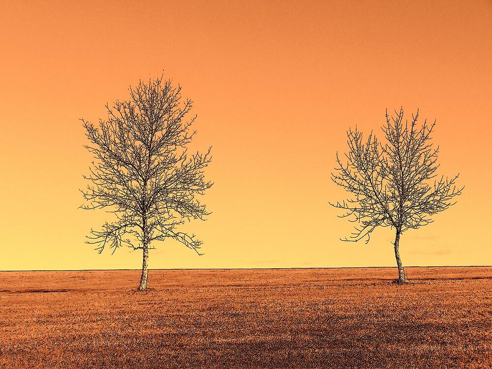 Orange Landscape 3 by Gene Cyr