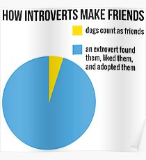 How introverts make friends Poster