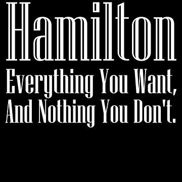 Hamilton Everything/Nothing by LeeinLimbo