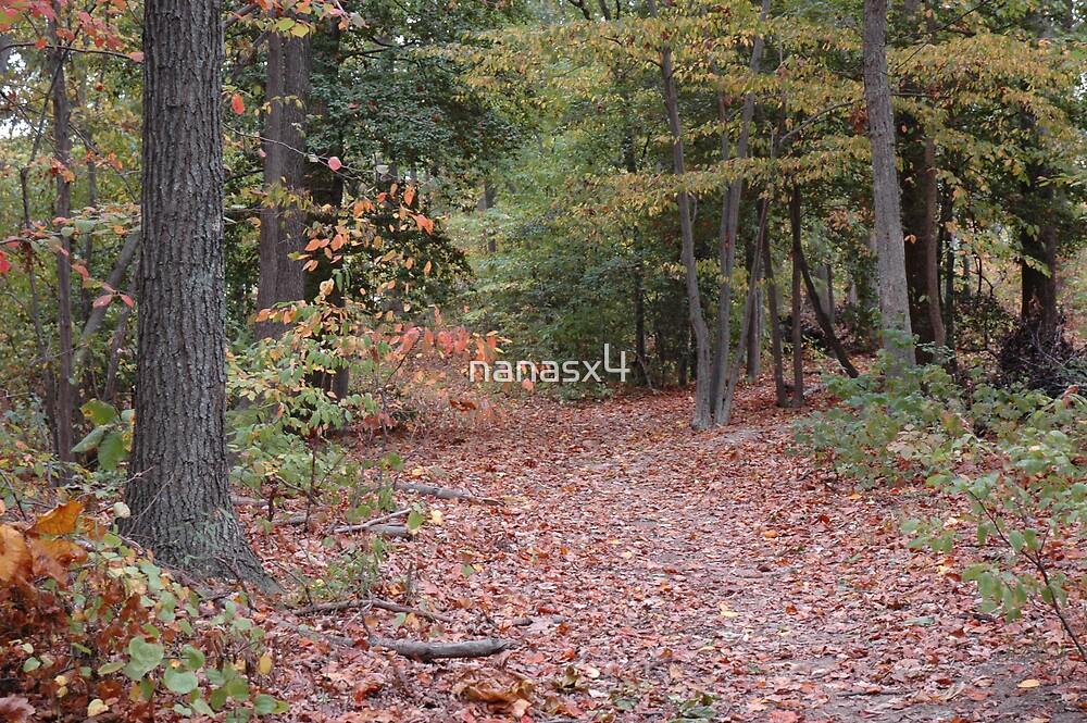 Lost woods  by nanasx4