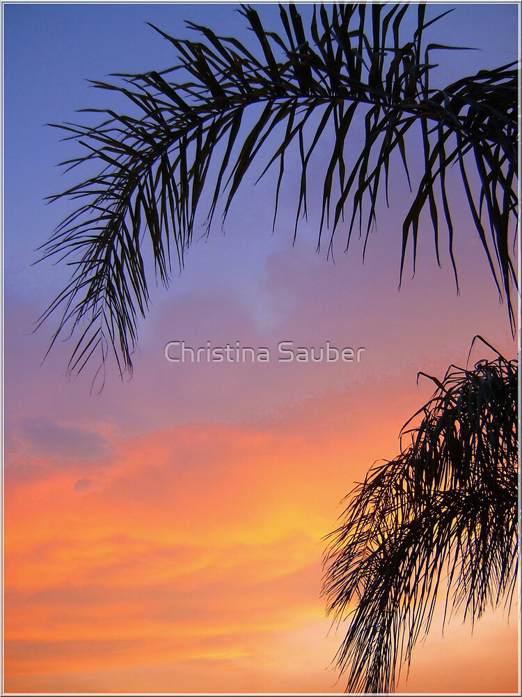 Sarasota Sunset by Christina Sauber