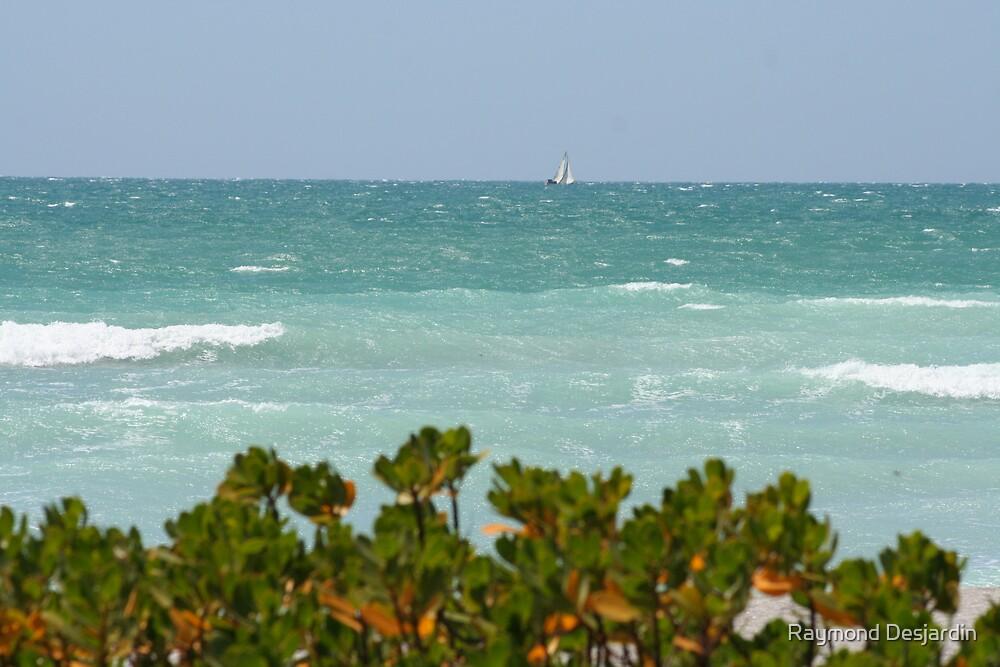 Gulf Of Mexico by Raymond Desjardin