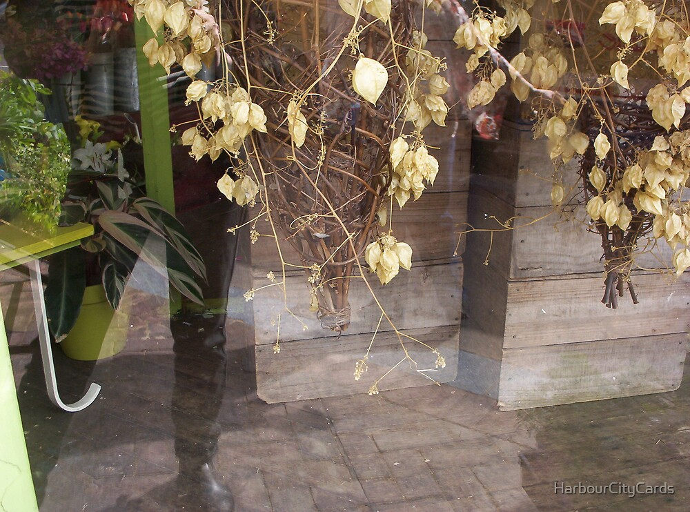 window reflection by HarbourCityCards