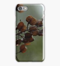 Otway 10 iPhone Case/Skin