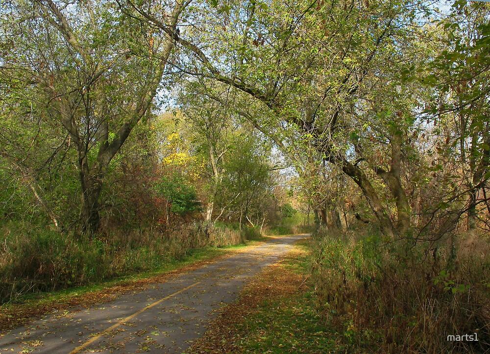 Oshawa's Nature Trails by marts1