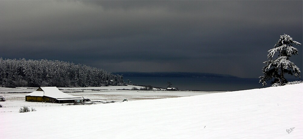 Ebey's Landing Snow by Rick Lawler