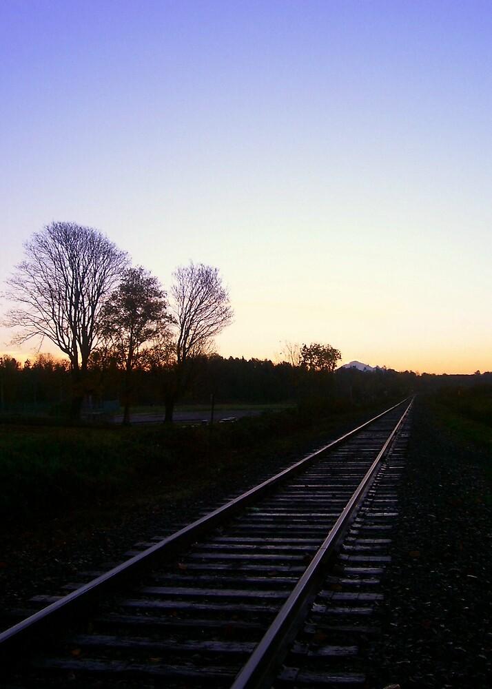Rail Trail by Natania Rogers