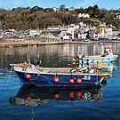 E5 Fishing Boat - Lyme Regis Harbour by Susie Peek