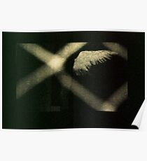 angel shadow Poster